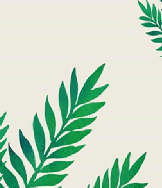 Feuilles vert