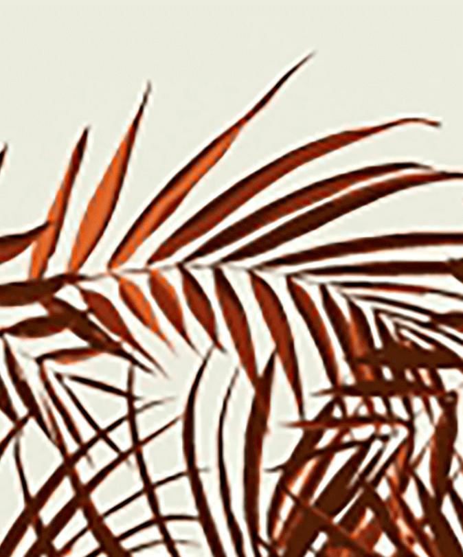 Palme Brique
