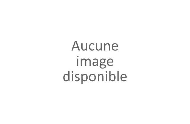 Rideau de tonnelle T08-3x3-E